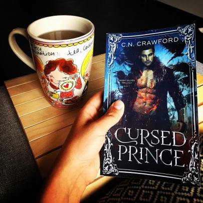 Urban Fantasy Book Review Cursed Prince